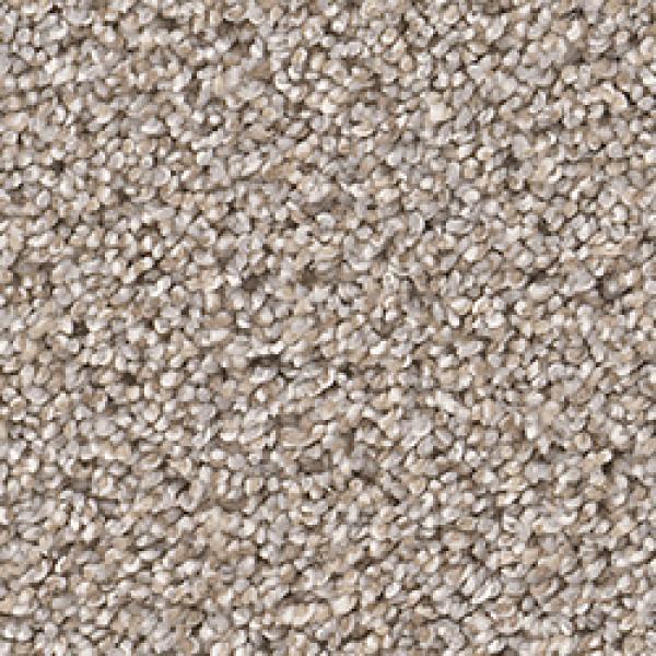 Dream Weaver Pure Soft Cashmere Carpet Reviews Taraba