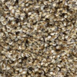 Lake Louise  - Copper Kettle Series - Frieze Carpet