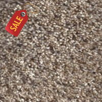Sun Tan - 2 - Textured Carpet