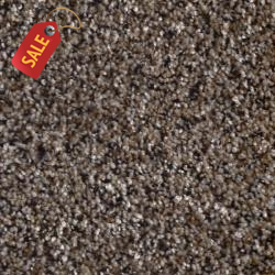 A400 - 402 - Textured Carpet