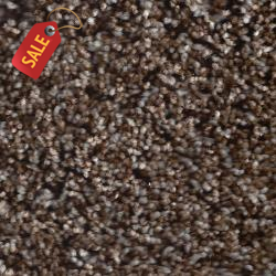 A400 - 404 - Textured Carpet