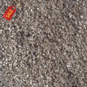 Coconut Grove - Textured Soft Carpet