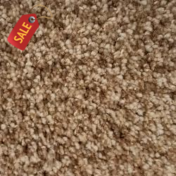 Posh - Driftwood - Textured Carpet - Textured Carpet
