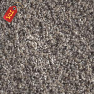 Paragon - Seal Skin - Frieze Carpet - Carpet Specials