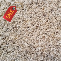 Soft Supreme - 313 - Soft Frieze Carpet
