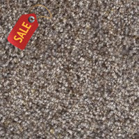 SP-55 - 186 - Textured Carpet