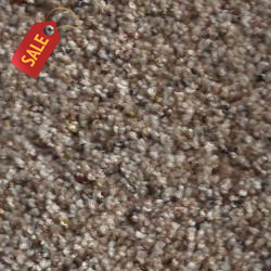 SP-55 - 228 - Textured Carpet - Textured Carpet