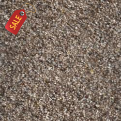 SP-55 - 230 - Textured Carpet - Textured Carpet