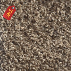 SV500 - Beige - Frieze Carpet - Frieze Carpet