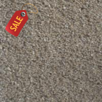 Tuxford - Sand Stone - Textured Carpet